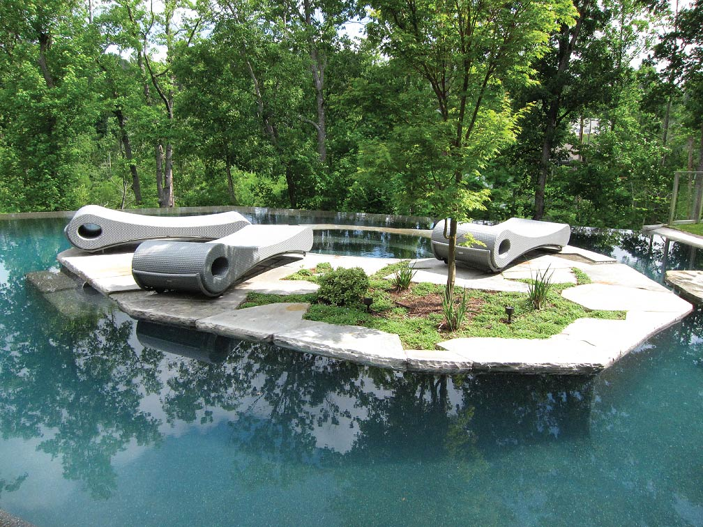 Pools For Your Backyard : Pool and Spa photo courtesy of Sunbelt Pools Atlanta GA