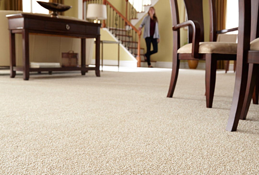 Carpet buying guide which type is right for you for Living room carpet