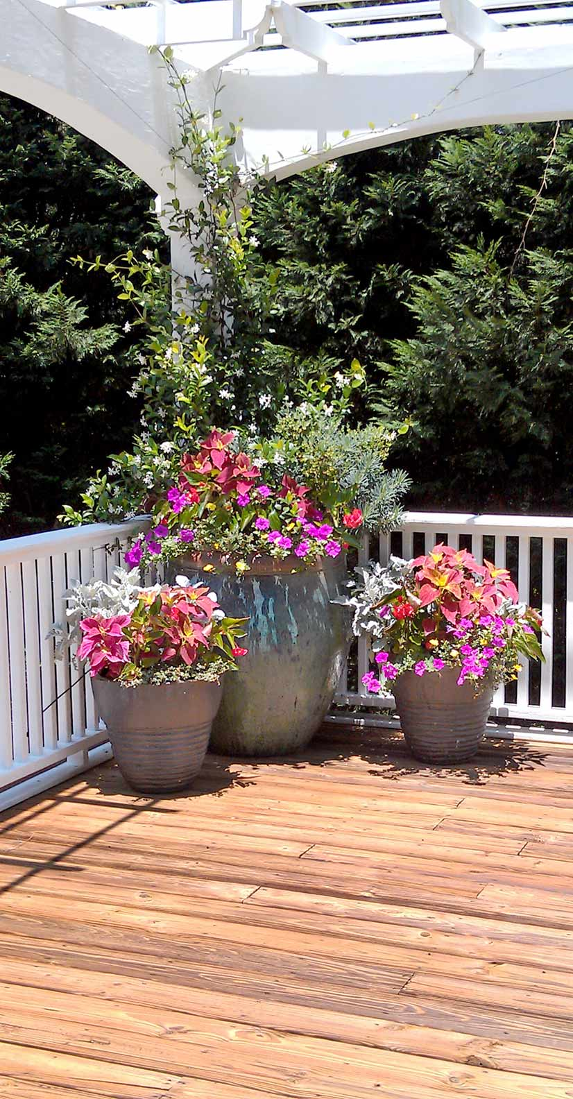 Color Your Garden Atlanta Home Improvement