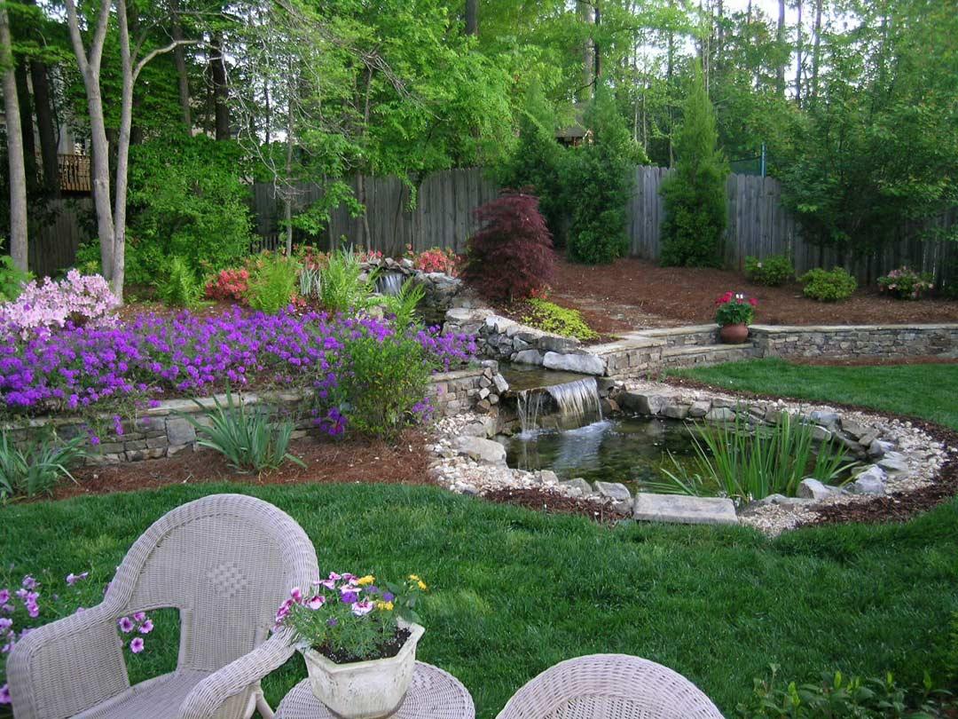 Backyard Ground Cover Options Backyard Ground Ideas