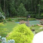 Landscape surrounding sport court