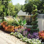 Curb appeal with flowers and shrubs