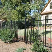 Rail Spear Top Convex Fence
