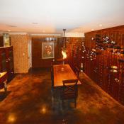 Remodeled crafstman - wine cellar