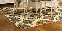 Pattern rug on hardwood floor