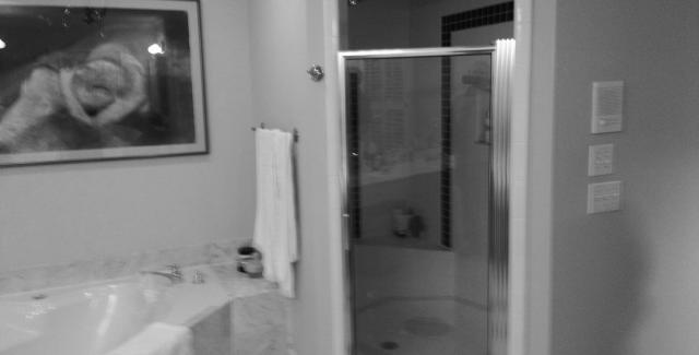 Bathroom remodel - before photo