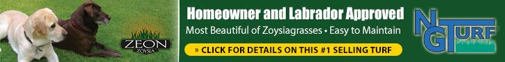 Zoysia Grasses - the #1 selling turf